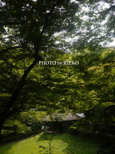2013-06-30_5830_BLOG.jpg