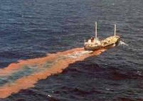 ウンコ 糞尿 海洋投棄