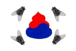 ウンコ大極旗