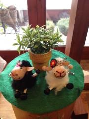 キーリング羊