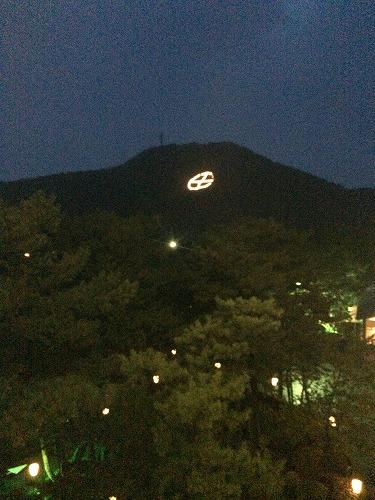 魚見岳 丸に十の字ライトアップ