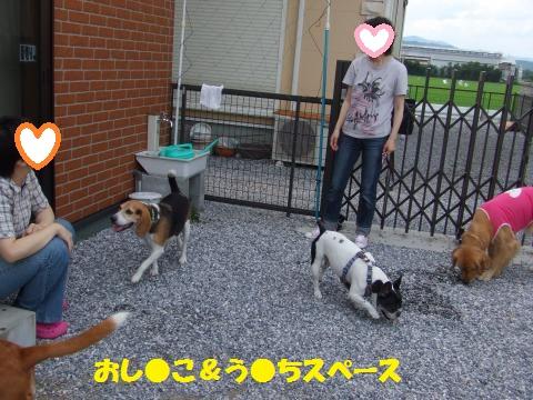 002_convert_20130715233418.jpg