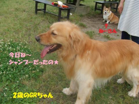 003_convert_20130603013018.jpg
