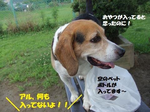 007_convert_20130710004153.jpg