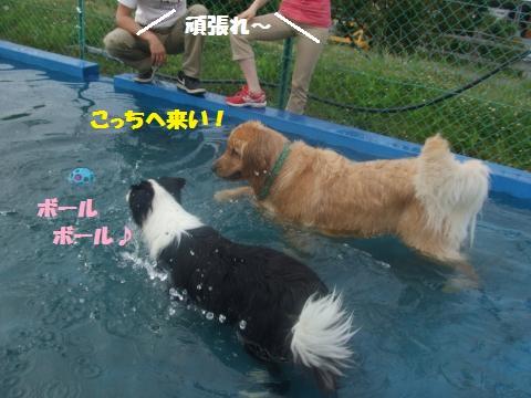 010_convert_20130603013609.jpg