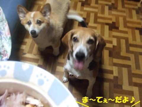 013_convert_20130726013912.jpg