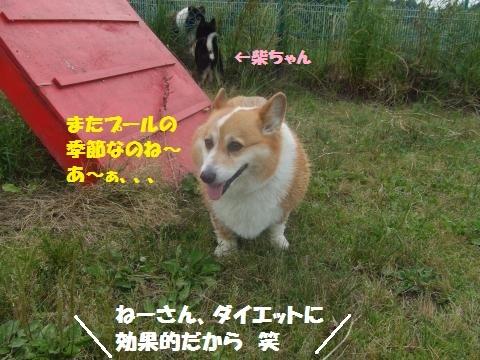 023_convert_20130603013258.jpg