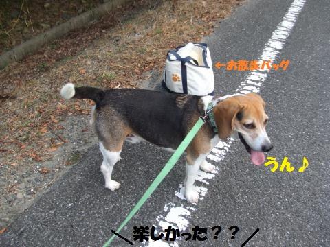 025_convert_20130816025324.jpg