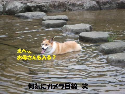 027_convert_20130916232322.jpg