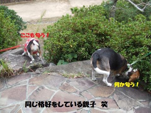 034_convert_20131107234532.jpg