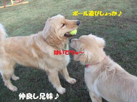 039_convert_20131101005605.jpg