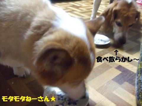 042_convert_20130726014218.jpg