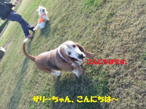 043_convert_20131101005439.jpg