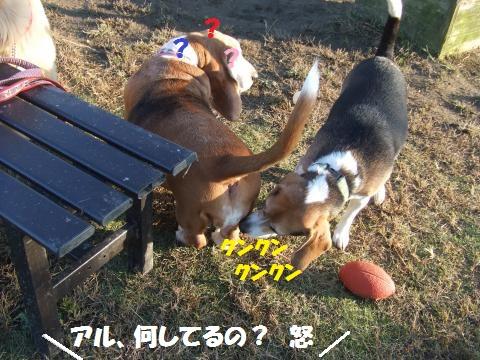 047_convert_20131101005718.jpg