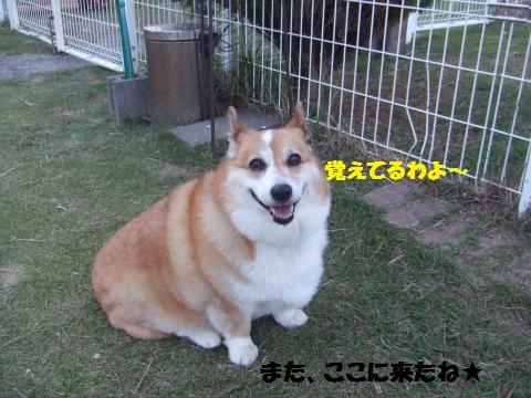 063_convert_20131112000636.jpg