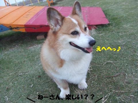 072_convert_20131112000953.jpg