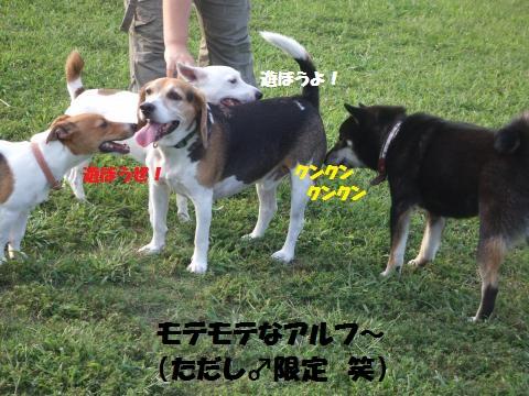 079_convert_20131014110834.jpg