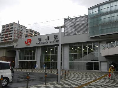 DSCN3449.jpg