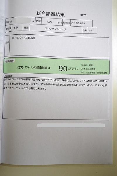 DSC_0114.jpg