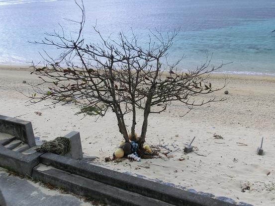 okinawa 1237-1