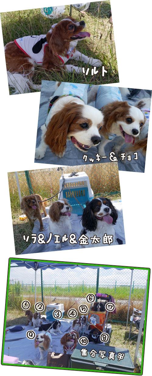 0516c_20130619215541.jpg