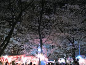 2013-04-01_19-59-02_HDR.jpg