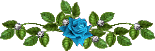 baraline3_20130619170121.png