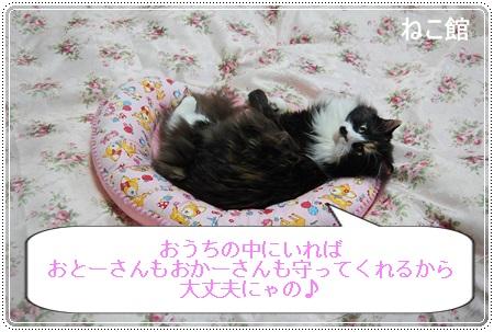 blog12_20130718220144.jpg