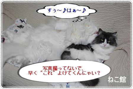 blog12_2013073012475677f.jpg