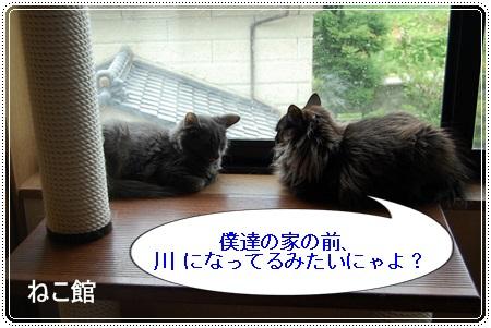 blog2_20130718215838.jpg