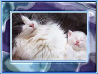 blog2_20130730124638aa9.jpg