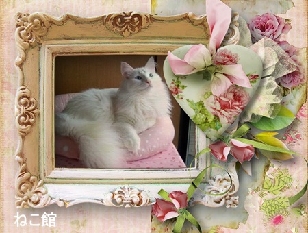blog2_20131020232510f57.jpg