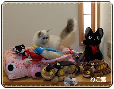 blog2_20131122103346e27.jpg