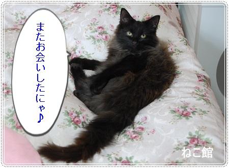 blog4_20130624103543.jpg