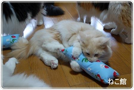 blog4_20130715214946.jpg