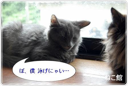 blog5_20130718215845.jpg