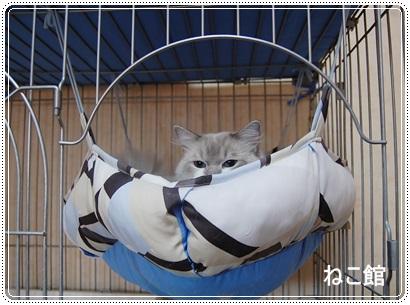 blog5_20130807074725499.jpg
