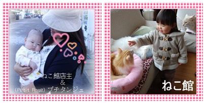 blog5_2013101512281382b.jpg