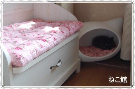 blog6_20130624103610.jpg