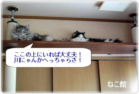 blog6_20130718220108.jpg