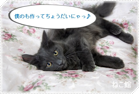 blog7_20131016130015b18.jpg