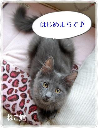 blog_20130624103538.jpg