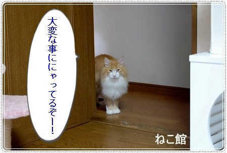 blog_20130718215836.jpg