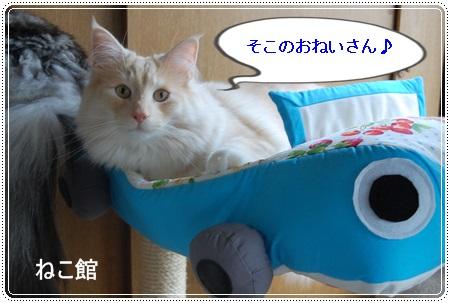 blog_2013080122153362f.jpg