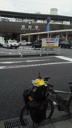 2012cycled08.jpg