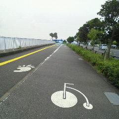 2012cycled10.jpg
