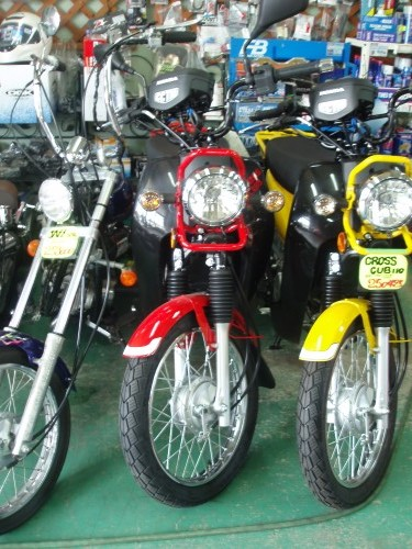 P8030006 (Custom)