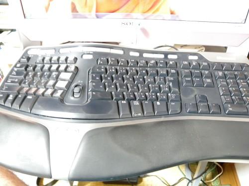 DSCN8305 (Custom)
