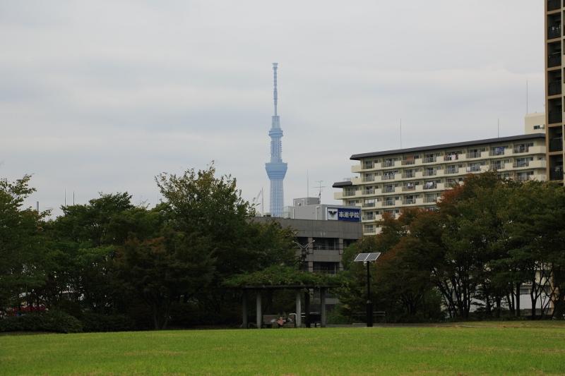h-oshima_0003f.jpg