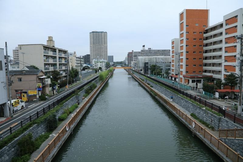 h-oshima_0024f.jpg
